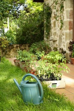 Tonte de pelouse le mans abattage d 39 arbre sarthe elagage for Entretien jardin 72